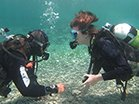 diver training pictures in cyprus