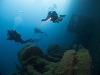 scuba divers over the Zenobia wreck in Cyprus