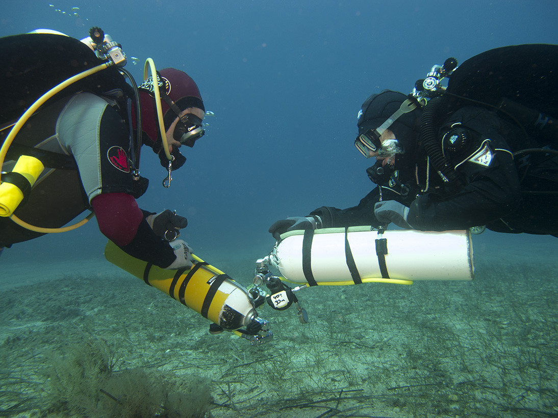 divers conducting skills with good buoyancy and trim