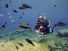 padi scuba diving course digital underwater photography