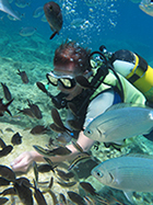 diver tries scuba diving in cyprus with scuba tech diving centre surrounded by fish