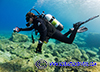 Scuba Diver taking photographs while diving in Cyprus