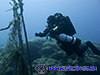 rebreather diver at the nets in Cyprus