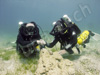 tech divers in cyprus